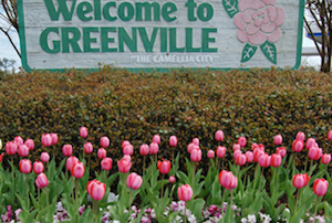 Cheap hotels in Greenville, Alabama