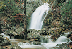 Discount hotels and attractions in Pelham, Alabama