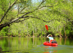 Discount hotels and attractions in Six Way, Alabama