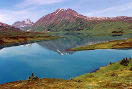 Discount hotels and attractions in Primrose, Alaska