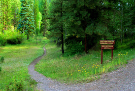 Discount hotels and attractions in Greer, Arizona