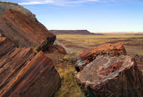Cheap hotels in Saint Johns, Arizona