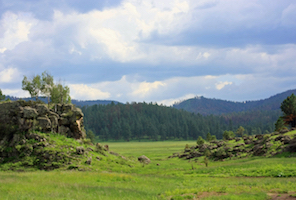 Hotel deals in Saint Johns, Arizona