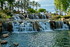 Discount hotels and attractions in Surprise, Arizona