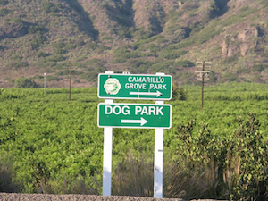 Discount hotels and attractions in Camarillo, California