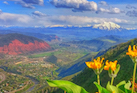 Discount hotels and attractions in Glenwood Springs, Colorado