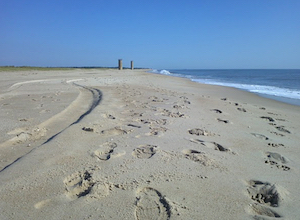 Hotel deals in Rehoboth Beach, Delaware