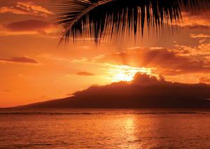 Discount hotels and attractions in Maalaea, Hawaii