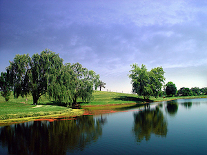 Discount hotels and attractions in Bowling Green, Kentucky