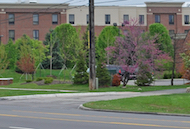 Discount hotels and attractions in Canton, Michigan