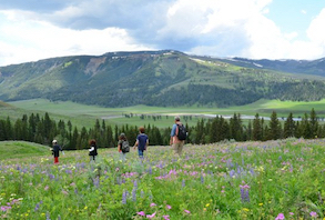 Discount hotels and attractions in Gardiner, Montana