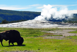 Hotel deals in West Yellowstone, Montana