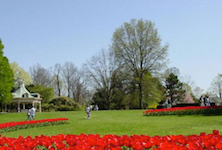 Discount hotels and attractions in North Lima, Ohio