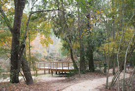 Discount hotels and attractions in New Caney, Texas